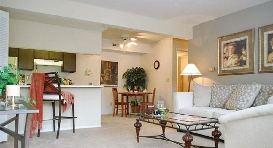 stone pointe village apartments for rent